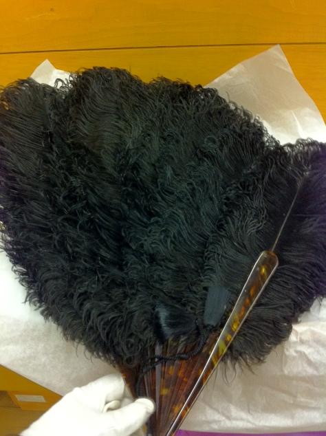 ostrich fan a