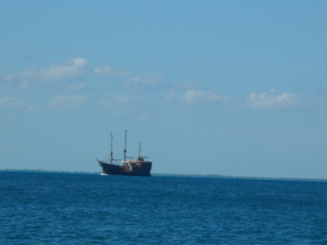 While on our trip, we saw this ship which is part of the Captain Hook Dinner and Show.