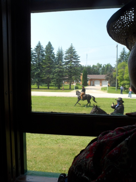 Shirley watching the horses.