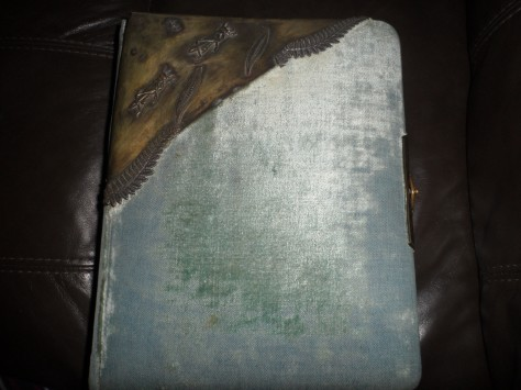 Antique photo album!
